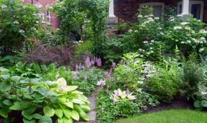 Lucille Crighton garden winner