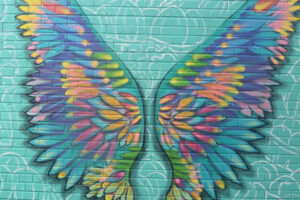A mural featuring colourfully feathered wings spread upward on a blue-green background.