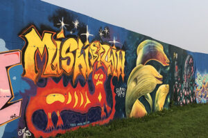 A picture of street art. Bright orange graffiti style letters cross a blue background. In the foreground is a spikey red and yellow four-legged cat-like creature. To the right of the creature, moray eels painted in bright greens and yellow swim.